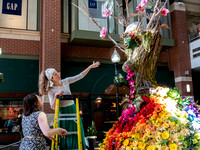 cit_210509_floral_display_SUNNWCP