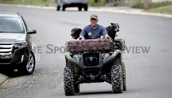 DOGS ON ATV.jpg