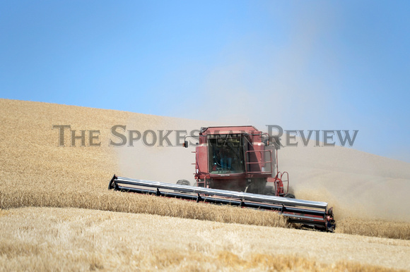 HARVEST ON THE PALOUSE 4