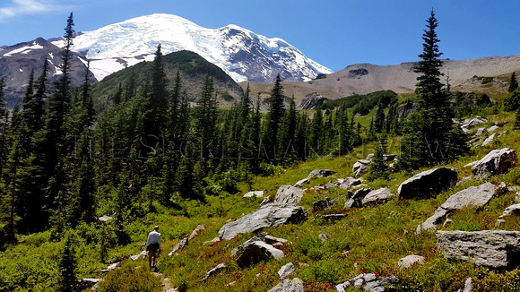 RAINIER FALL HIKING 5.JPG